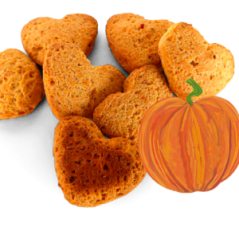 pumpkin dog cookies
